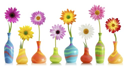Daisy flowers in vases
