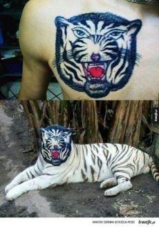Flat Tiger tattoo