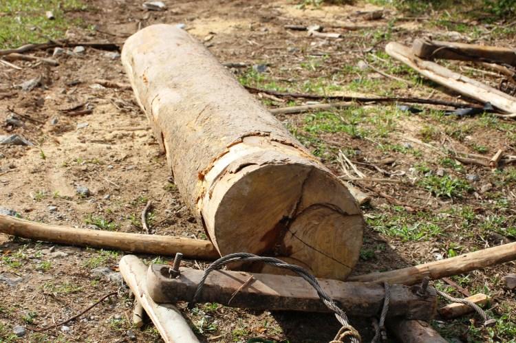 Nhóm lâm tặc bỏ chạy, để lại khúc gỗ này ngay sau khi phát hiện bị phóng viên ghi hình. (Ảnh: Vietnam+)