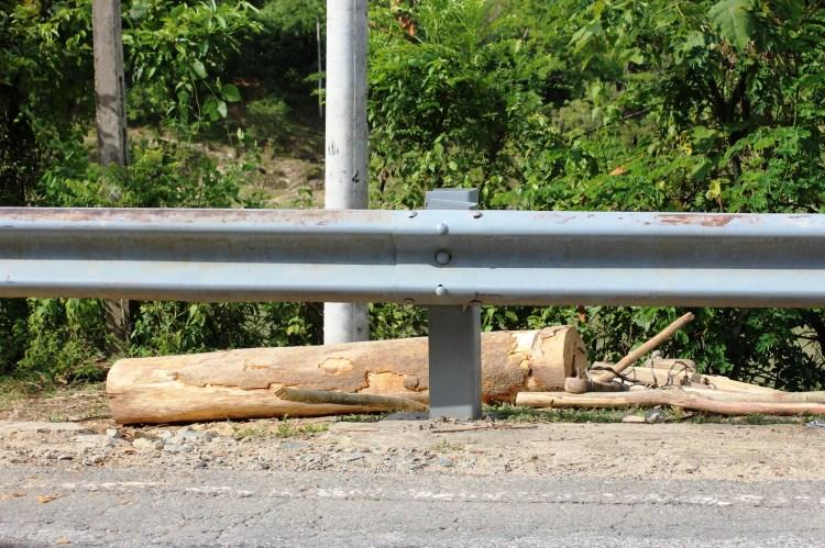 Ngay sau khi phát hiện bị ghi hình, nhóm người vận chuyển gỗ đã bỏ chạy để lại những khúc gỗ như thế này ở ven đường, tại huyện Nam Giang, tỉnh Quảng Nam. (Ảnh: Vietnam+)