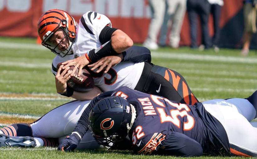 Grading the Bengals' positions after their Week 2 loss to the Chicago Bears
