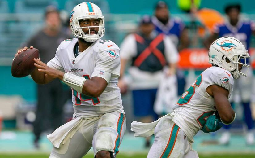 Miami's Backup QB Job is in Good Hands