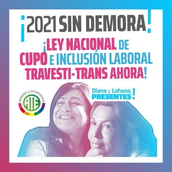 Con 207 votos a favor, 11 en contra y 7 abstenciones, diputados dio media sanción a la Ley que lleva el nombre de Diana Sacayán y Lohana Berkins.