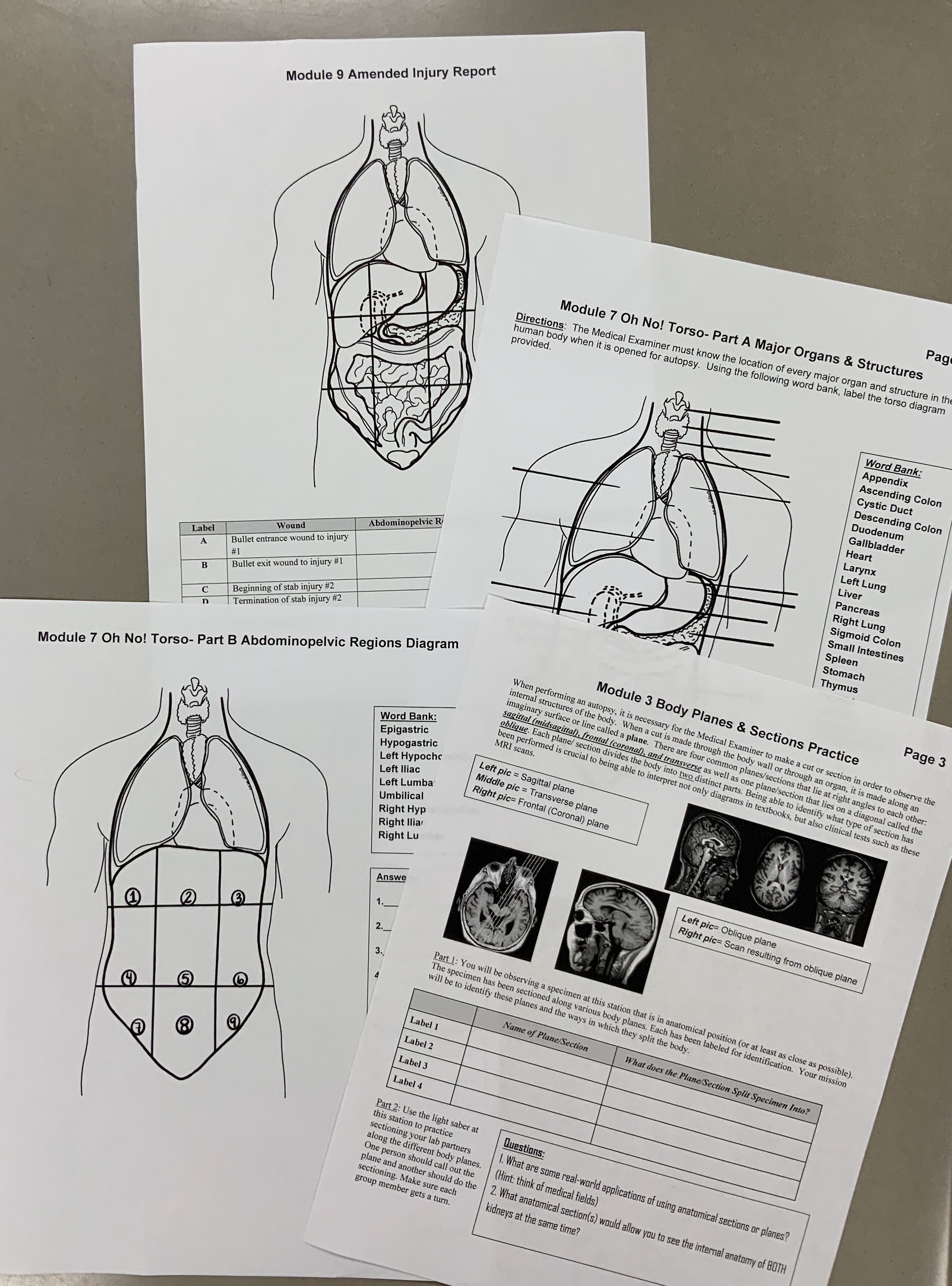 Assistant Medical Examiner Training Program A