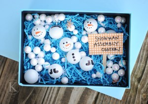 Snow & Ice Center Ideas