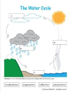 Label Water Cycle2
