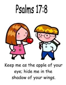 Psalms 17:8-Memory Verse & Helps