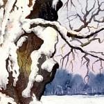 Eiche im Winter - Aquarell