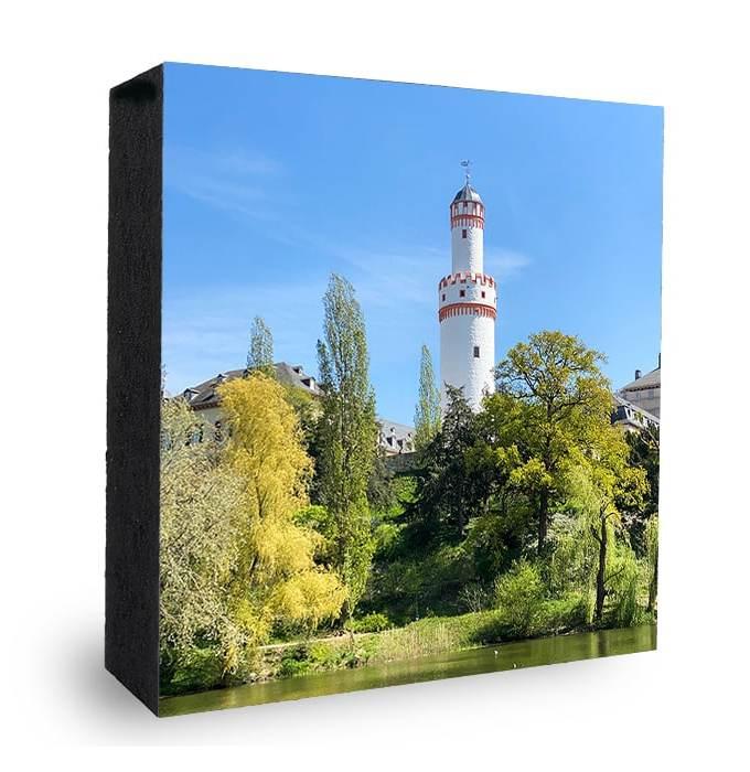 Bad Homburg Schlossturm im Grünen