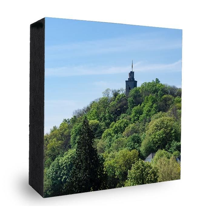 Falkensteiner Burg Blick