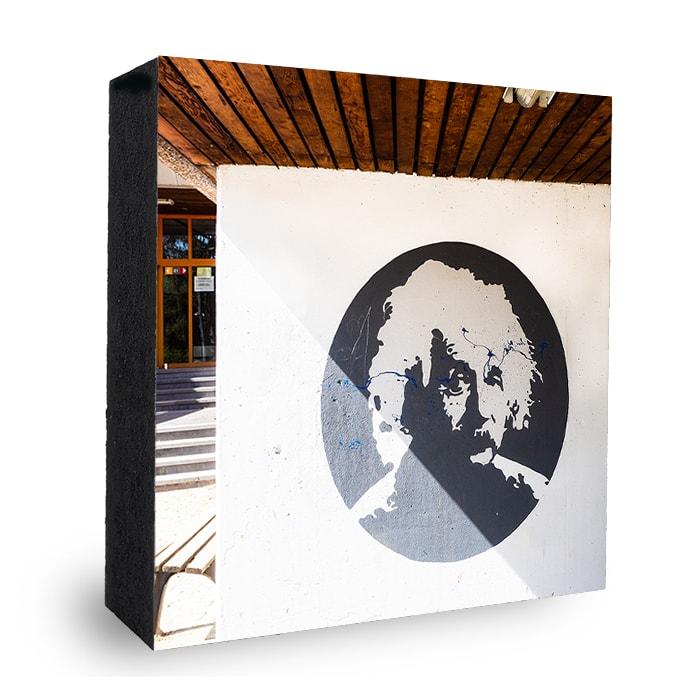 AES-Albert Einstein