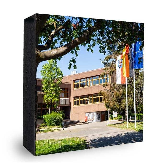 Albert Einstein Schule Schwalbach AES