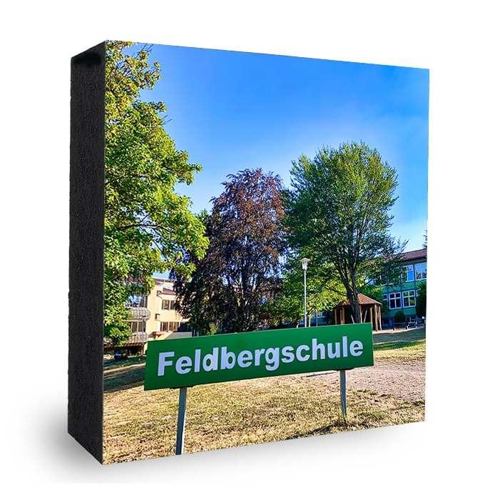 Feldbergschule Oberursel