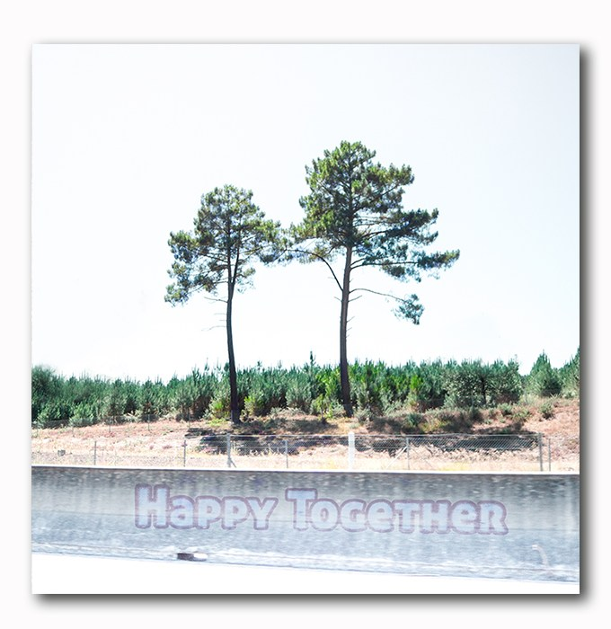 Happy Together Bild auf Holz
