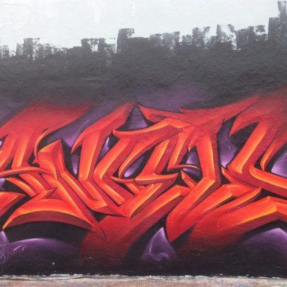 Tazroc Art 2-8