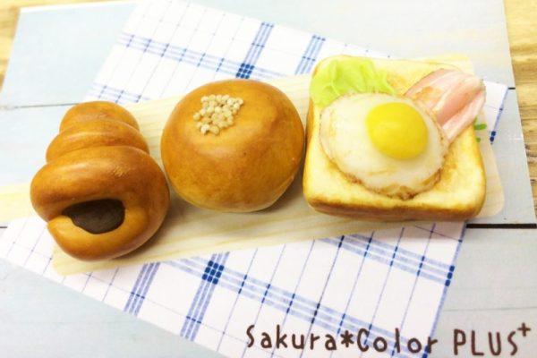 sakura*color PLUS⁺さんのご紹介♬