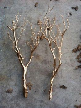 Branches de déco