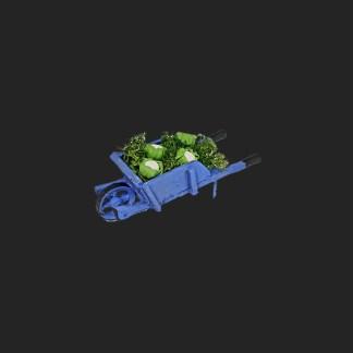brouette de choux-fleurs provence pour votre décor de crèche