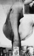 Window Legs © Louis Armand