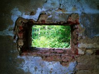 Window of Opportunity © Louis Armand