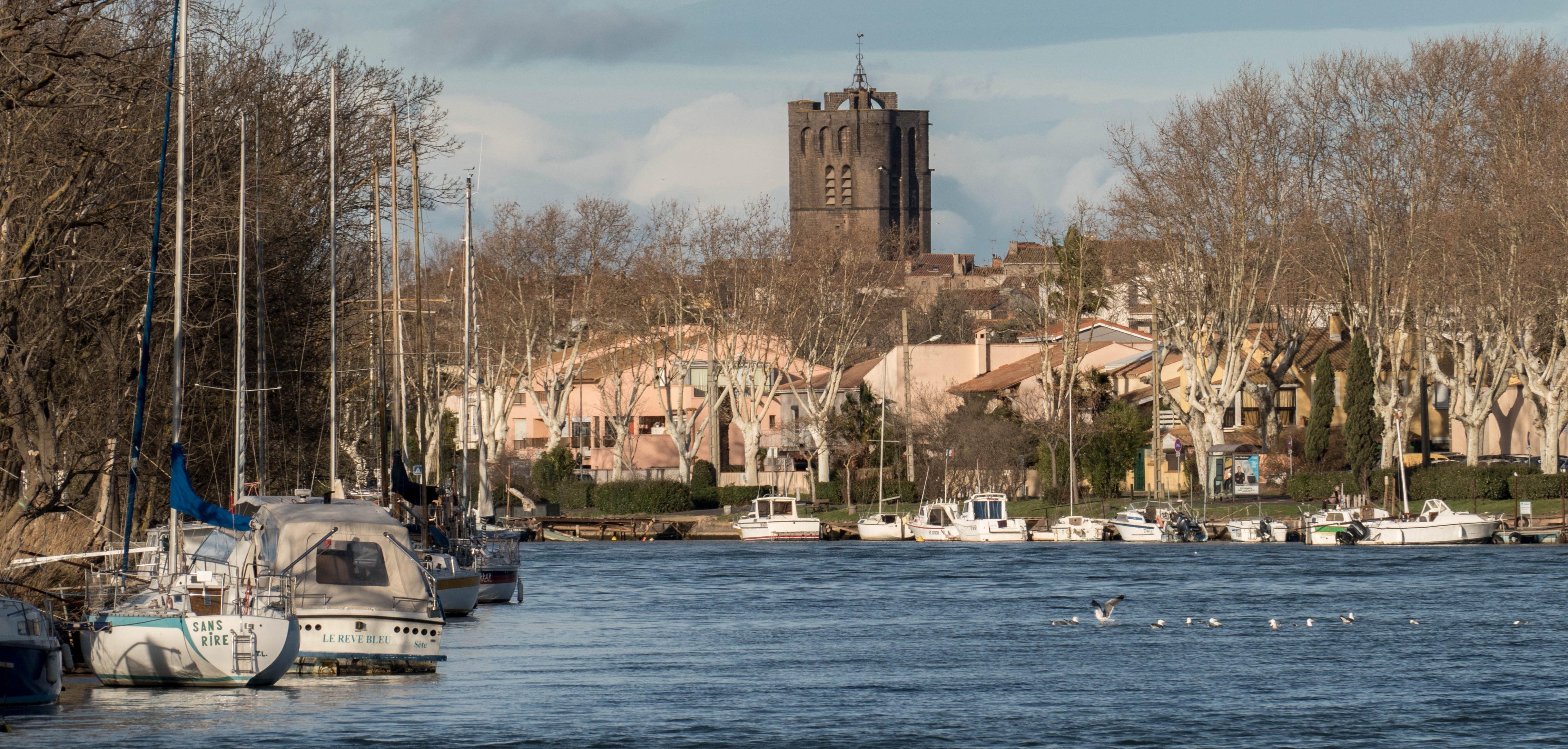 le bord de l'Hérault -Agde