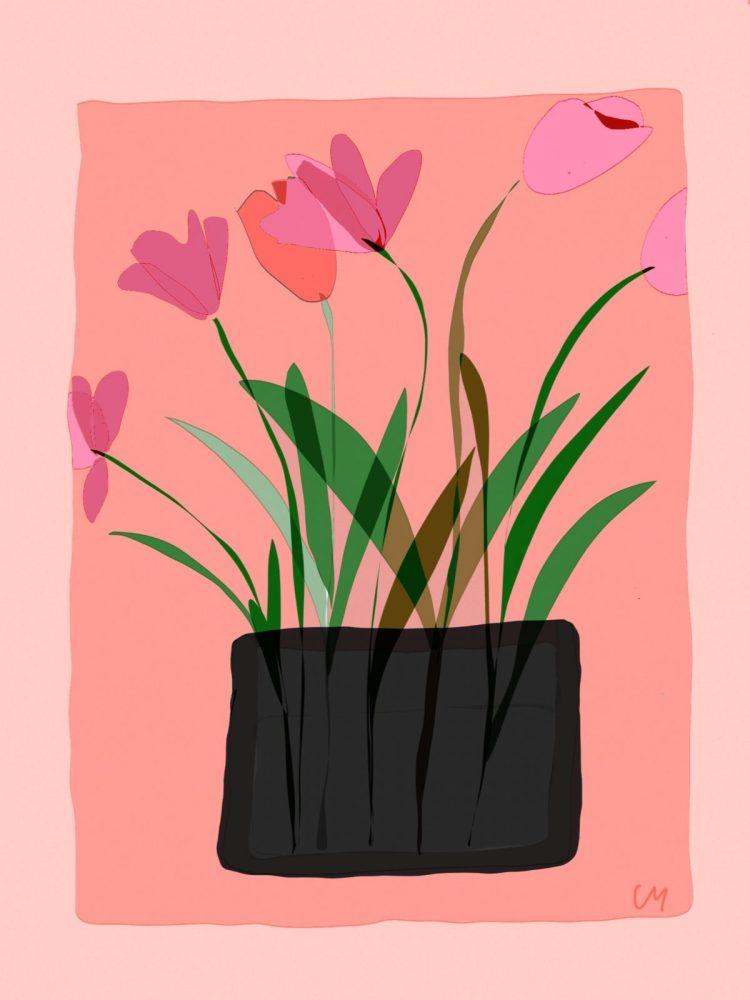 carte postale de créateur vase aux tulipes Agde
