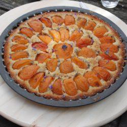 abrikozentaart met lavendel en walnoten van de boer
