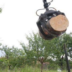 beeldhouwbokken worden vervoerd