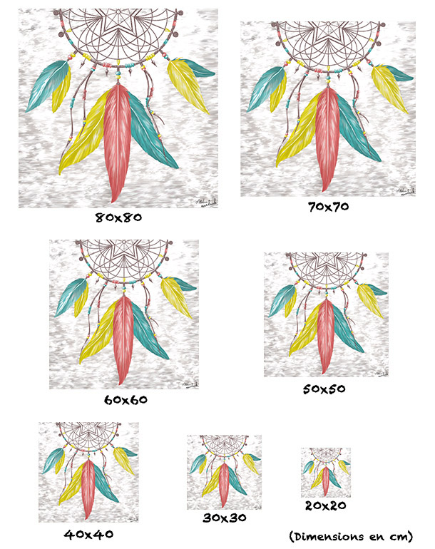 tableau-affiche-papier-aluminium-tailles-décoration-désert-attrape-reve-plumes