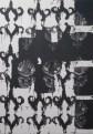 Frédéric Houvert // sans titre // technique mixte sur toile // 146 x 114 cm // 2006
