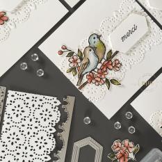 Cartes de remerciements Ballade des Oiseaux 2019 14