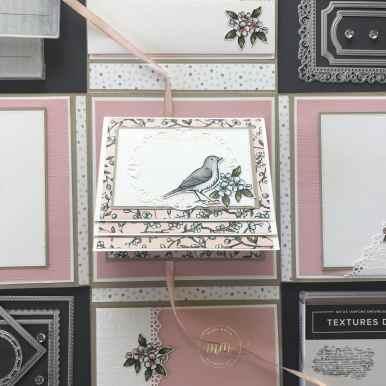 Mini album dans sa boite Ballade des oiseaux 2020 7