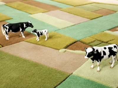 Florian Pucher's magic carpet ride