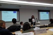 prof. Nicola M. Lowe, Zinc-Net COST programos TD1304 veiklos Valdymo komiteto pirmininkė