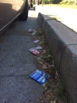 Trident trash.JPG