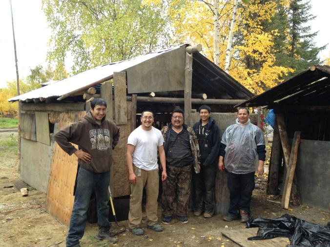 A group of us helped to build a smokehouse for my parents, Al and Eleanor Yatlin of Huslia. Left-right: Al Yatlin Jr., Johnnie Yatlin, Ross Sam, Marvin Yatlin Jr. and Sarbelio Gonzalez. Photo by Angela Gonzalez