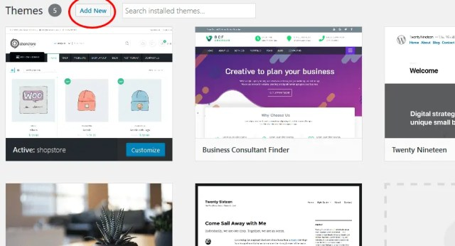 access the WordPress theme