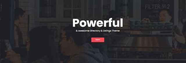 directory starter wordpress theme