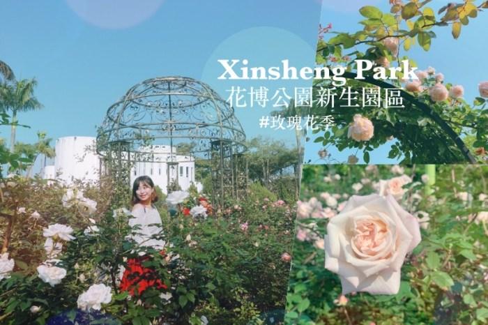 台北城市旅行・台北玫瑰園 玫瑰展浪漫又好拍 #0311花況