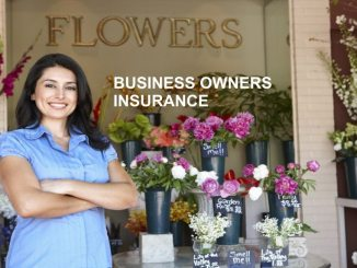 Business Owners Insurance