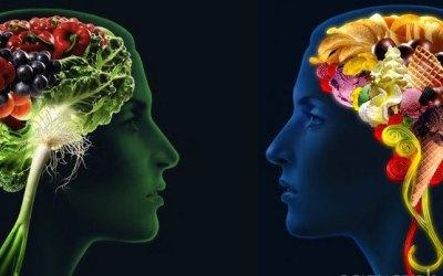 Πως η τροφή επηρεάζει τον εγκέφαλό μας