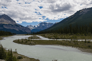 Yoho National Park, Canada. Example of Boreal Forest Biome (Taiga) Flikr Image