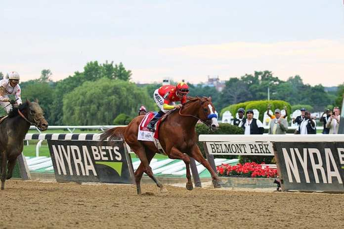 800px-Justify_-_2018_Belmont_Stakes