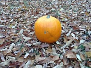 Fall in North Carolina, Halloween