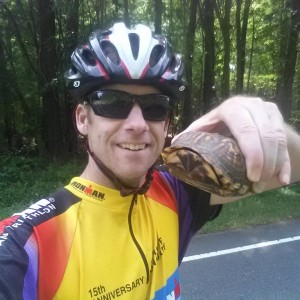 You can save the animals: Rick saves a turtle on the road