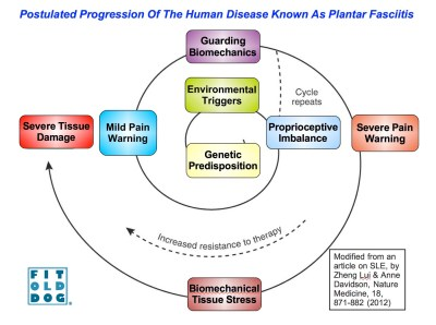FitOldDog's human disease progression for plantar fasciitis