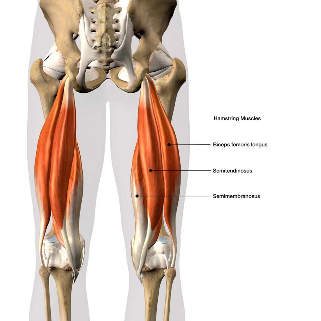 running muscle strain