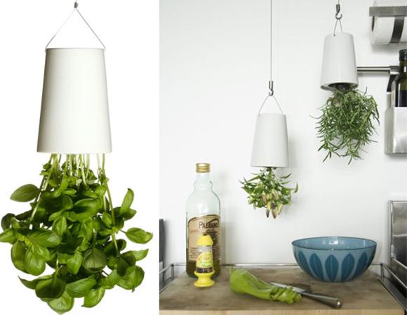 plantas colgantes make it work. Black Bedroom Furniture Sets. Home Design Ideas