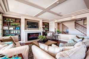 Erie Highlands living room by Oakwood Homes