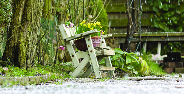 Nature Puts a Damper on Gardening